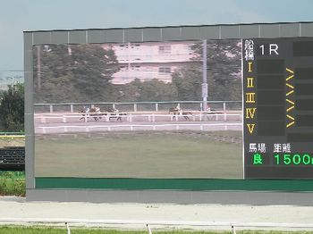 競馬2.JPG