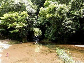 亀岩の洞窟4-2.JPG