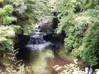 亀岩の洞窟4.JPG