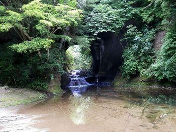 亀岩の洞窟5.JPG