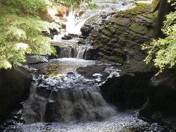 亀岩の洞窟6.JPG