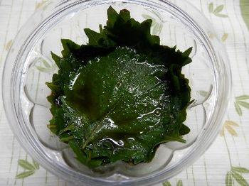 大葉にんにく醤油2.JPG