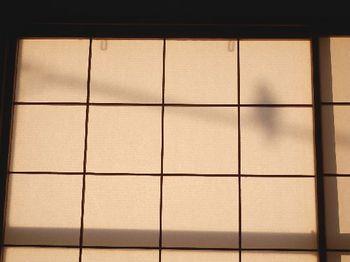 朝の影絵.JPG