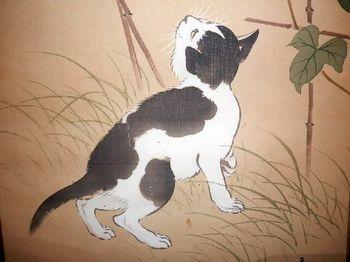 白黒ネコ2.JPG