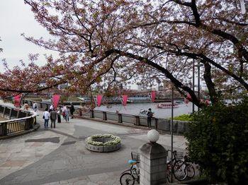 隅田川.JPG